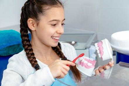 Ein etwa 10 jähriges Mädchen hält in der linken Hand ein Gebissmodell. Mit der rechten Hand hält sie eine Zahnbürste und putzt das Gebiss. Dabei lächelt sie.