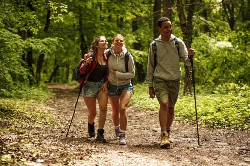 Eine 3-köpfige Gruppe von Jugendlichen wandert durch einen Wald.