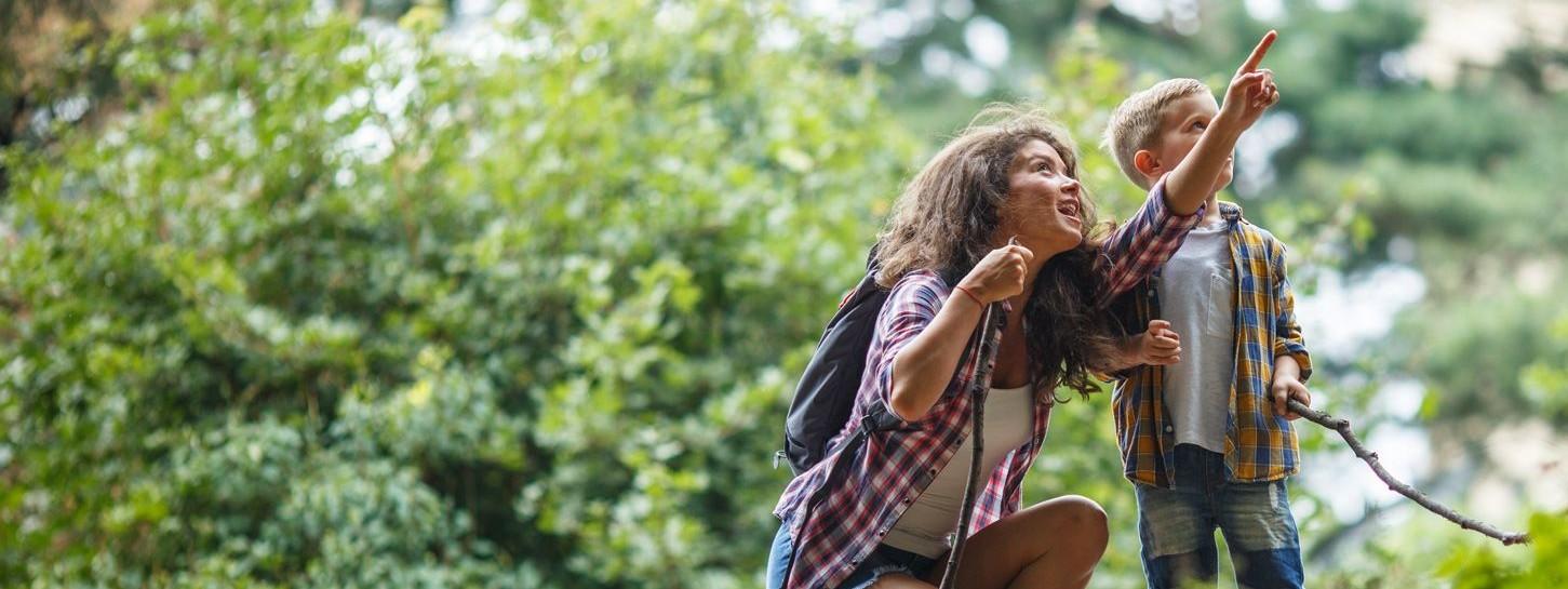 Eine etwa 35-jährige Frau hockt neben ihrem etwa 5-jährigem Sohn im Wald und zeigt nach oben.
