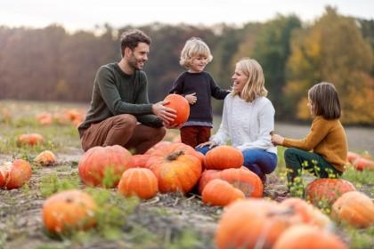 Eine Familie mit zwei Kindern hockt in einem Kürbisfeld. Alle schauen sich gegenseitig an und lachen sich zu.